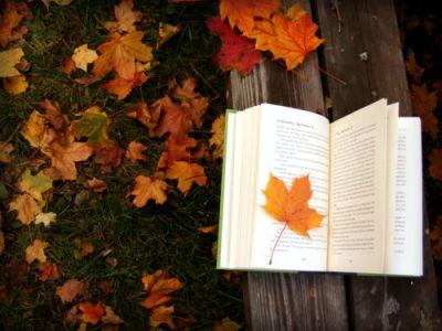 140595-Fall-Reading